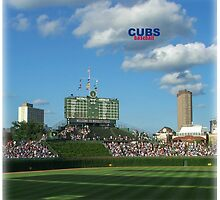 Cubbies by don thomas