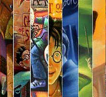 Harry Potter Book Collection by mikelpegel