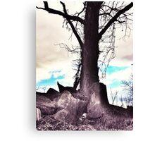 Earth Palm  Canvas Print