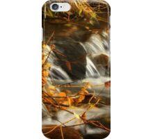 Boyer Creek Montana iPhone Case/Skin