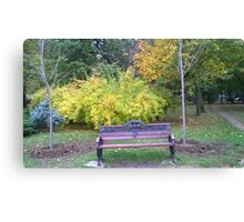 Lonely bench Canvas Print