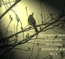 Micah 7:8 by loramae