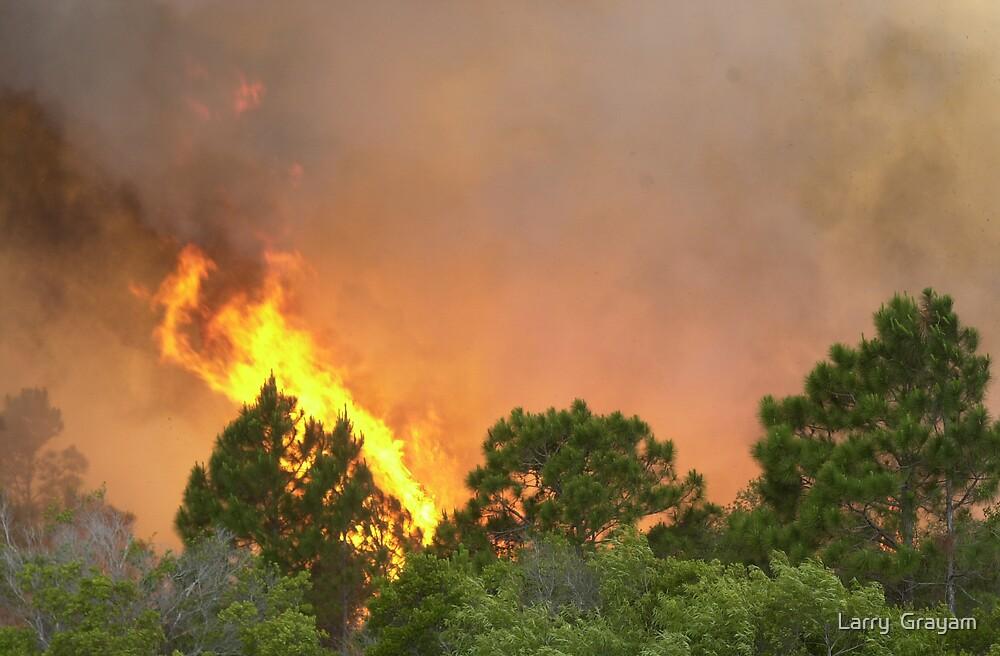 Indrio Savannahs woods fire by Larry  Grayam