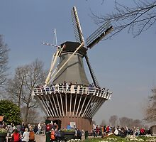 Dutch way of spending a day of work :-) by Thea 65