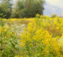 Wildflower Tapestry by Tibby Steedly