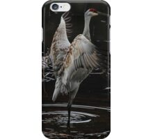 The Crane Ballet #2 iPhone Case/Skin
