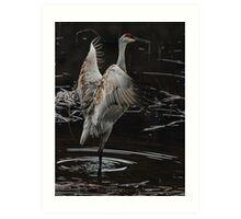 The Crane Ballet #2 Art Print