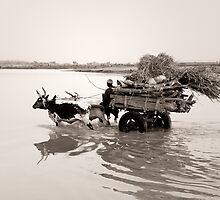 Djenné, Mali #32 by Mauricio Abreu