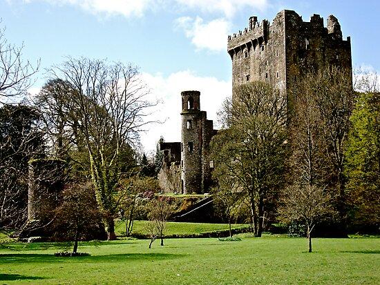 Blarney Castle, Ireland by Erin  Sadler