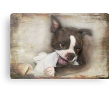 Knick-Knack, Paddywhack, Give the Dog a Bone Canvas Print
