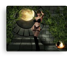 in stockings Canvas Print
