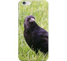 Carrion Crow iPhone Case/Skin