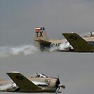 Vintage T-28s by Jonicool