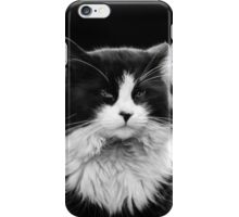 Majestic Moggy iPhone Case/Skin