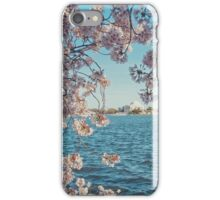 Cherry Blossoms in DC iPhone Case/Skin