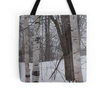 Snowy Birch Tote Bag