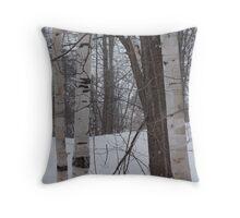 Snowy Birch Throw Pillow