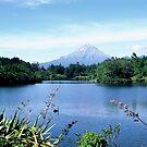Mt Taranaki by Louise Marlborough