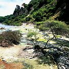 Waimangu Volcanic Valley  by Louise Marlborough