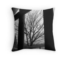 Pane In The Glass Throw Pillow