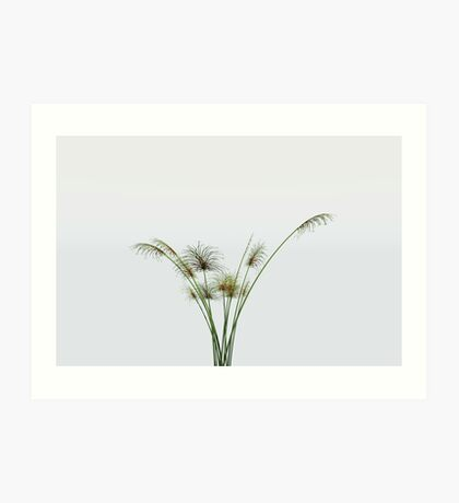 Papyrus Plant Art Print
