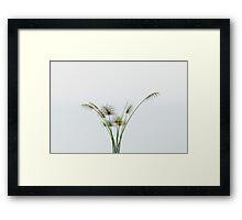 Papyrus Plant Framed Print