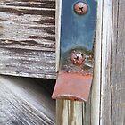 Rusty Gatekeeper by Monnie Ryan