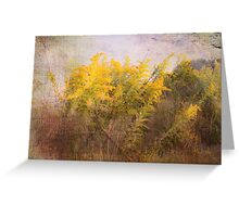 Love of Nature Greeting Card