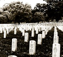 Arlington National Cemetary by Christopher Morrow