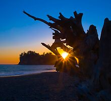 Olympic Sunset by RavenFalls