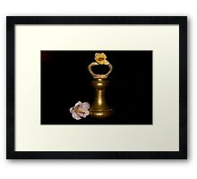 Lilies and Old Brass Weights Framed Print