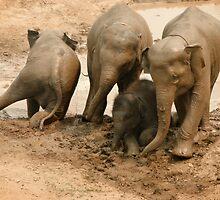 Baby's Mud bath by Kyra  Webb
