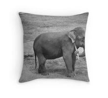That's the spot in B&W Throw Pillow