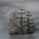 The Voyage by Varinia   - Globalphotos