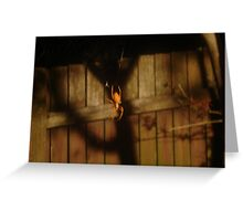 Spidery Web & Fence Greeting Card