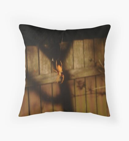 Spidery Web & Fence Throw Pillow