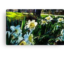 SURREAL FLOWER FANTASY Canvas Print