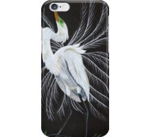 Great egret mating display iPhone Case/Skin