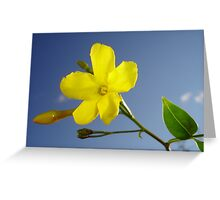 Yellow Jasmine Flower and Bud Against Blue Sky Greeting Card