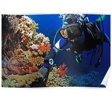 Diver and scorpionfish Poster