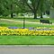 *Feature Page/Parklands-Gardens, Everyday Life*