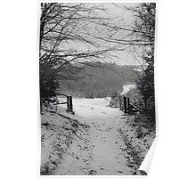Narnia b&w Poster