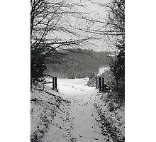 Narnia b&w Photographic Print