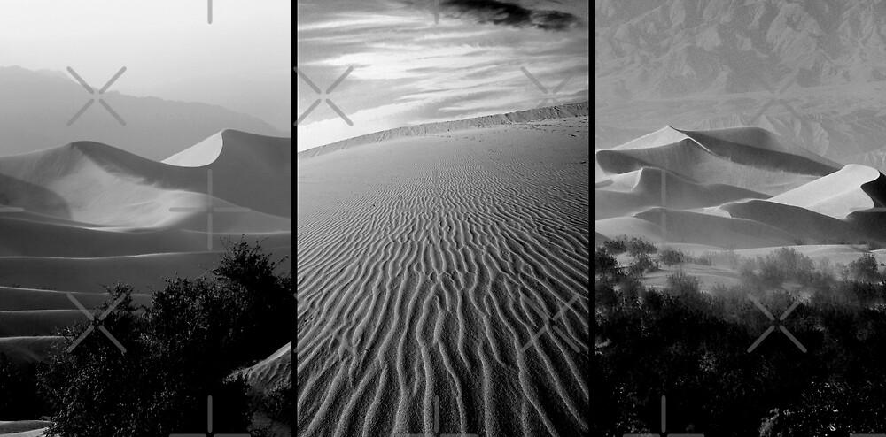 Sensual Lines by Varinia   - Globalphotos