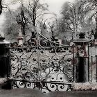 icy gate by gothicolors