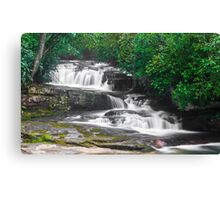 Dual Waterfalls Canvas Print