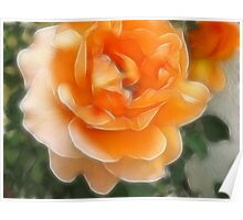 Peach Rose 2 Purity Poster