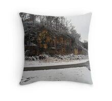 December Snow Throw Pillow