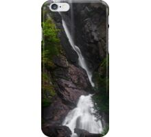 Tall Fall iPhone Case/Skin