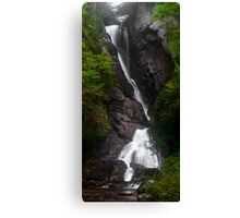 Tall Fall Canvas Print